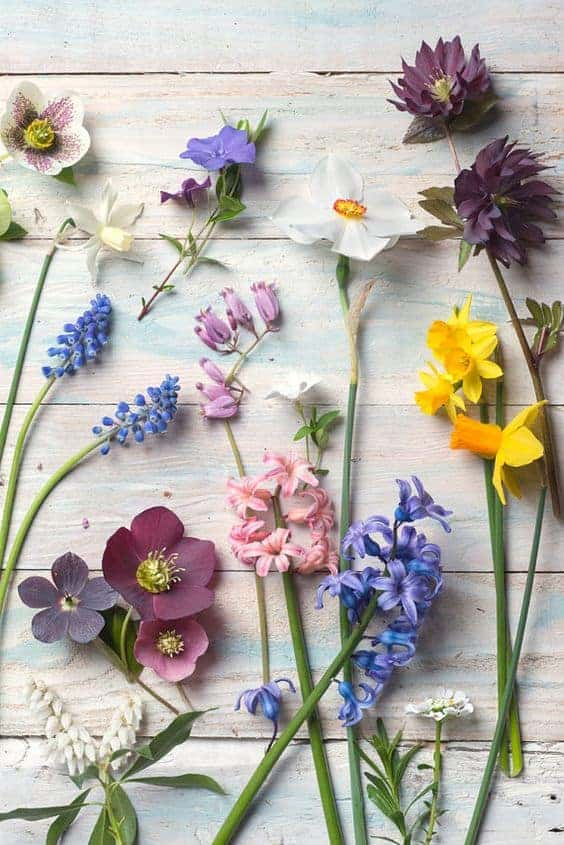 10 Fresh Spring Floral Decor Ideas to Brighten Your Home