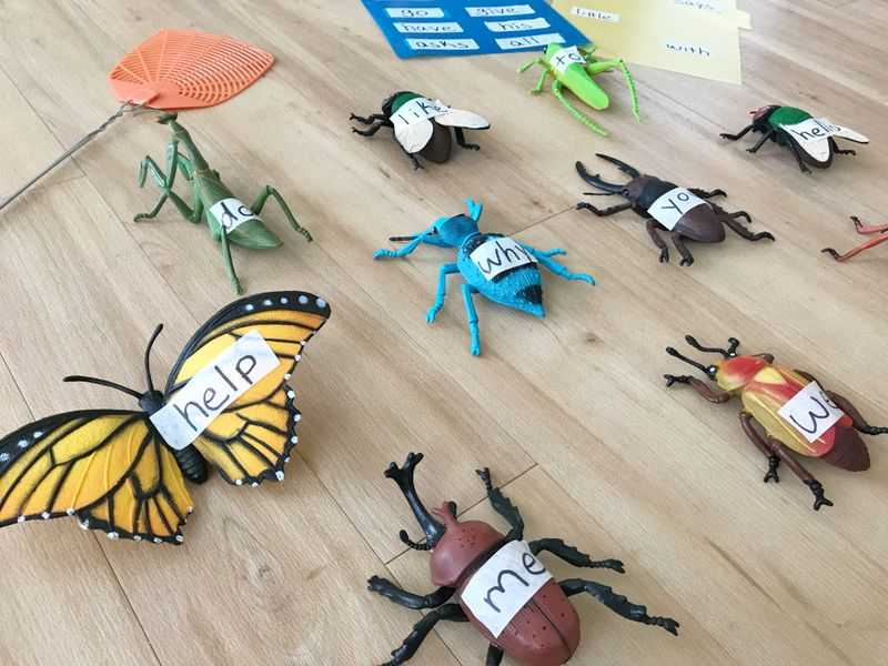 Plastic bugs with words written on them