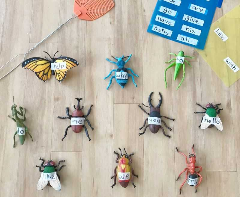 Bugs with words taped to them and a fly swatter