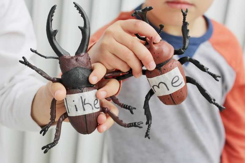 Two children holding large plastic bugs
