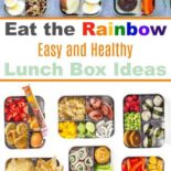 A collection of easy, healthy lunch boxes