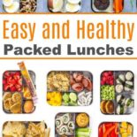 A collection of easy and healthy lunch boxes