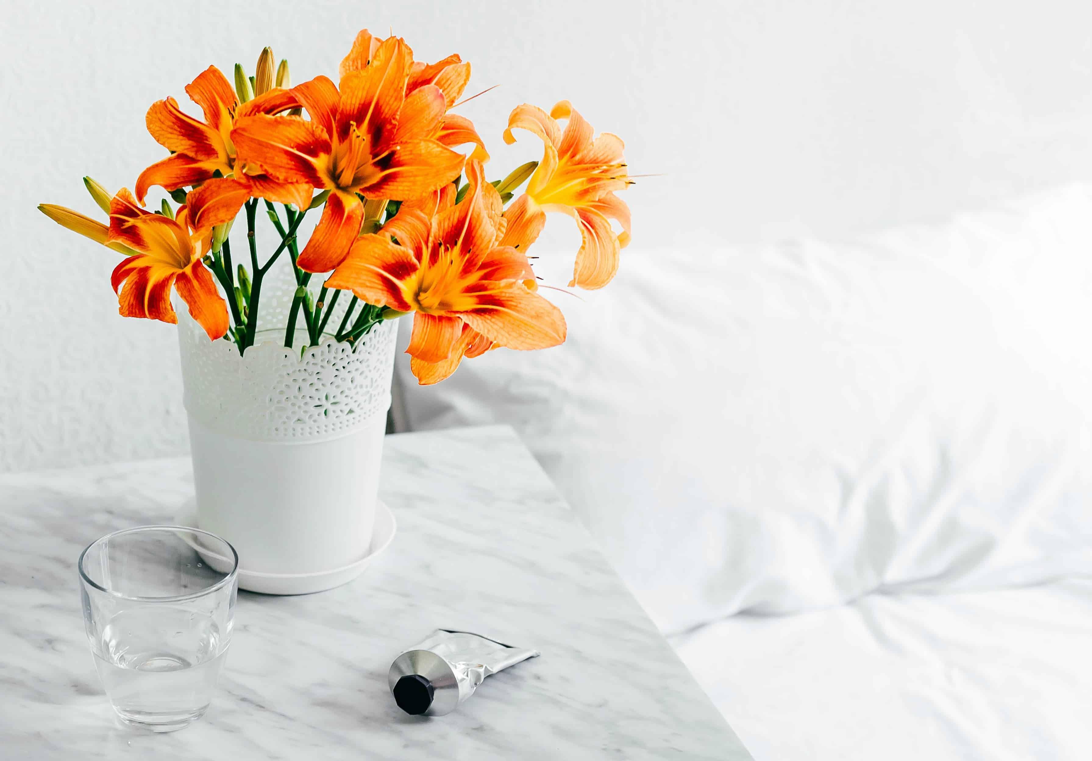 Vivid orange flowers next to a bed