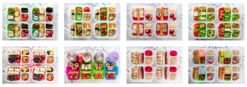A huge collection of lunch box meal prep recipes