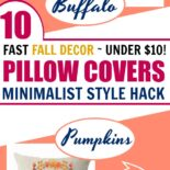 List of 10 fall pillow covers under $10