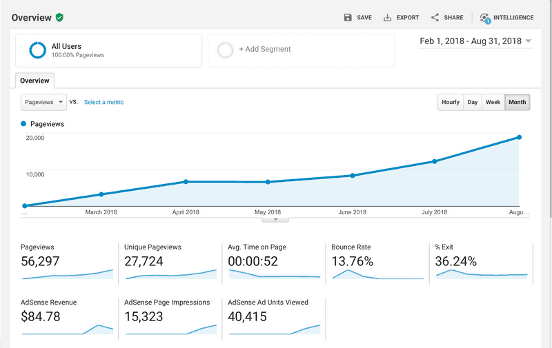 Screenshot of Google Analytics results for six months