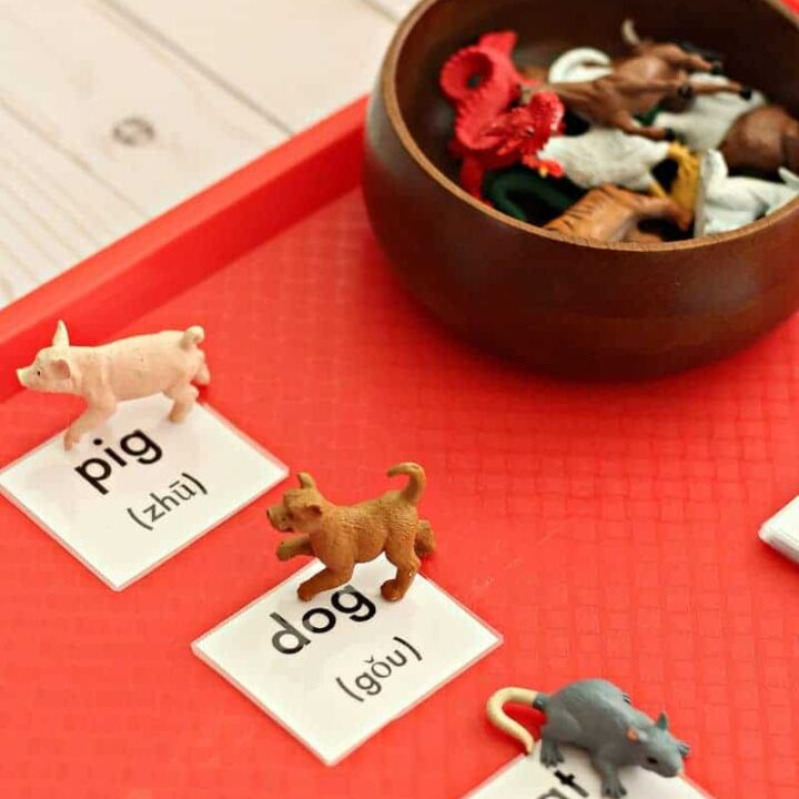 Learn the Animals of the Chinese Zodiac with this Fun Game!