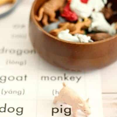 Chinese New Year Activity: Learn the Chinese Zodiac!