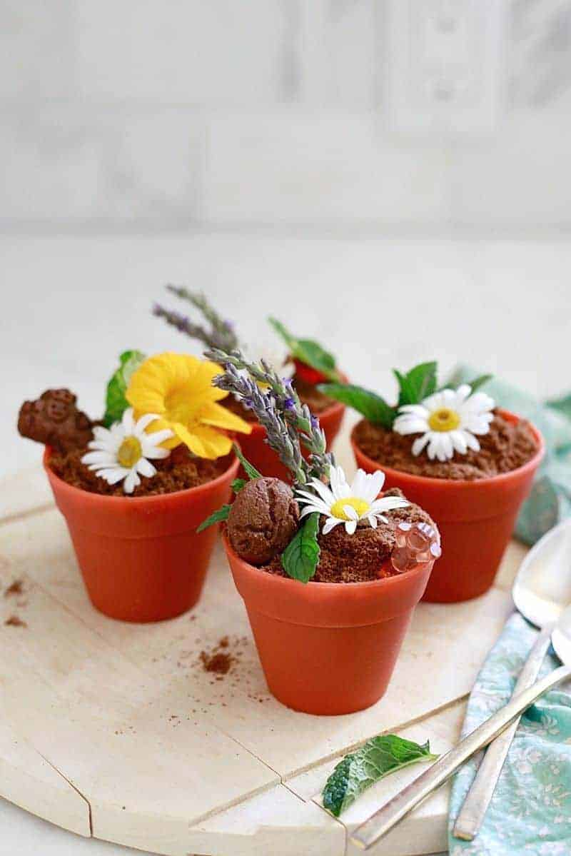 Earth Day dirt cup recipe