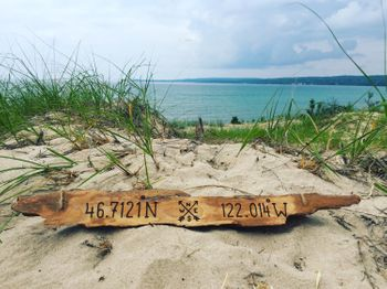 Driftwood personalized sign for men